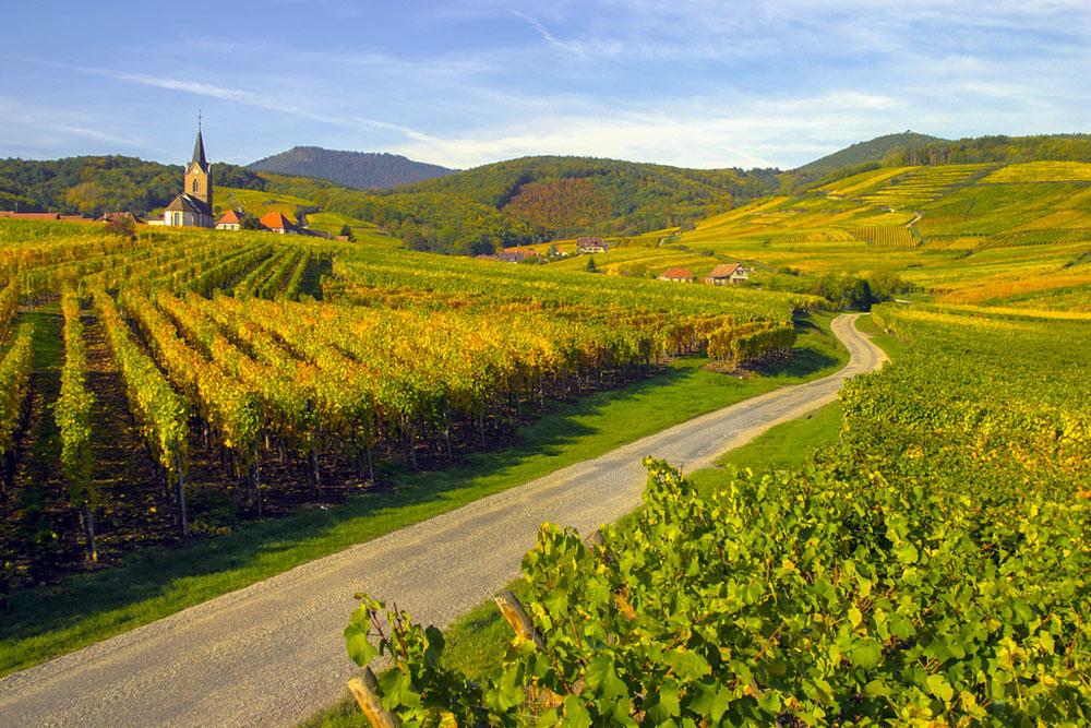 route des vins alsace mulhouse